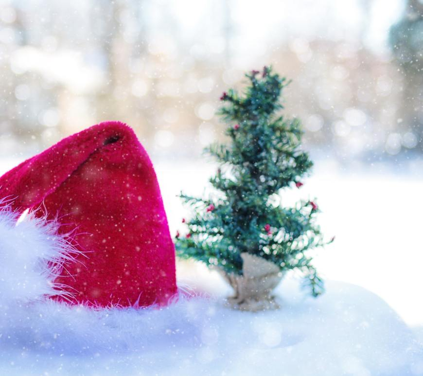 santa hat and tree in the snow